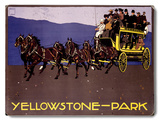 Yellowstone Park Carriage