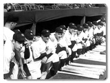 1937 World Series New York Yankees