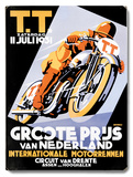 Dirt Track TT Motorcycle Racing