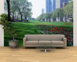 Public Gardens  Loop  Cityscape  Grant Park  Chicago  Illinois  USA