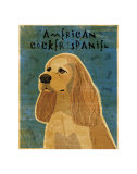 American Cocker Spaniel I