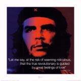 Che Guevara: Revolutionary