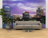 Panoramic View of an Urban Skyline at Night  Orlando  Florida  USA