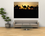 Silhouette of Camels in a Desert  Pushkar Camel Fair  Pushkar  Rajasthan  India