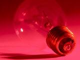 Studio Shot of Light Bulb in Red Light