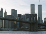 Brooklyn Bridge and the Manhattan Skyline with the World Trade Center  New York City  America