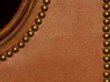 Close Up of Brown Leather and Furniture Rivets