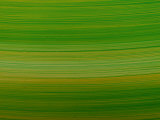 Striated Green Background