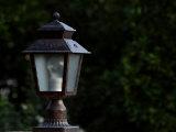 Decorative Lighting Fixture Outdoors