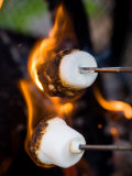 Close-Up of Charred Marshmallows Burning in Fire