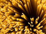 Close-Up of Dried Spaghetti Pasta