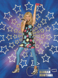 Hannah Montana: Rock the Stage