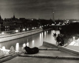 Paris  Cats at Night