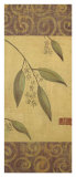 Eucalyptus Leaves I
