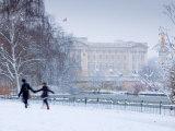 St James Park and Buckingham Palace  London  England  UK