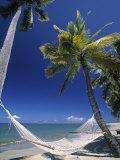 Hammock on Beach  Danarau  Viti Levu  Fiji
