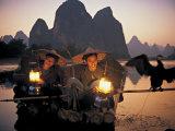 Cormerant Fishermen  Yangshuo  Guangxi  China
