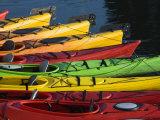 Ocean Kayaks  Rockport Harbour  Rockport  Cape Ann  Massachusetts  USA