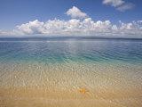 Colon Island Star Beach  Bocas Del Toro Province  Panama