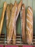 Boulangerie  Sarlat  Dordogne  France  France