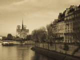 Notre Dame Cathedral and Ile St-Louis Buildings  Paris  France