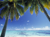 Tropical Beach  North Aitutaki Island  Cook Islands