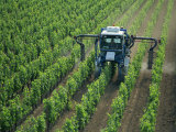 Vine Spraying  StEmilion  Bordeaux Region  Aquitaine  France