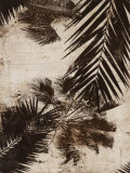 Palms I