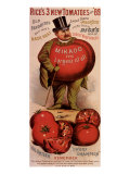 Rice&#39;s Tomato Seeds  Mikado  c1889