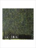 Park Giclée par Gustav Klimt