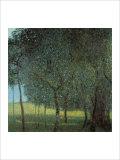 Arbres fruitiers Giclée par Gustav Klimt
