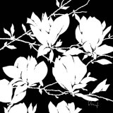 Black and White Magnolia