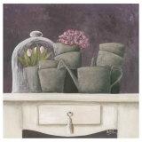 Tulipes et Fond Violet