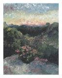 Arkansas Mountain Sunset