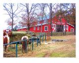 Big Cedar Lodge Horse Barn