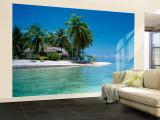 Palm Trees on the Beach  Tikehau  French Polynesia