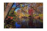 Lamington River At Tewksbury  New Jersey