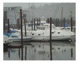 Boat dock in harbor