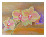 Orchids No 9