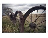 Wheel Row