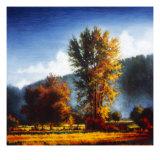 Autumn Morning II