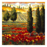 Tuscany in Bloom III