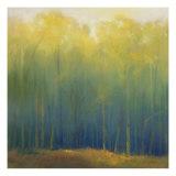Deep Woods in Summer Giclée par Teri Jonas