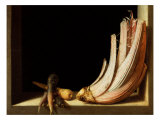 Still Life with Cardoon and Parsnips  1604