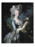 """La reine Marie-Antoinette dit """"à la Rose"""" (1755-1793)"""