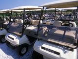Fleet of Golf Carts Awaiting Avid Golfers  USA