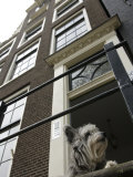 Schnauzer Dog Sitting on Stoop  Amsterdam  Holland