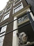 Schnauzer Dog Sitting on Stoop  Amsterdam  Holland