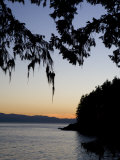 Sunset on the Pacific Coast of Vancouver Island  British Columbia  Canada