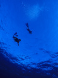 Snorklers Diving into a Deep Blue Tropical Ocean